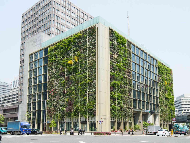 L'Urban farm di Tokyo e la speranza di un nuovo satoyama