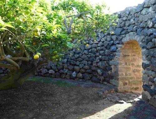 I giardini panteschi di Pantelleria alla radice dell'idea di giardino